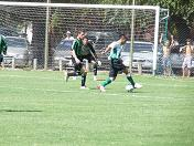 inferiores banfield